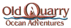 Old Quarry Kayak Tours